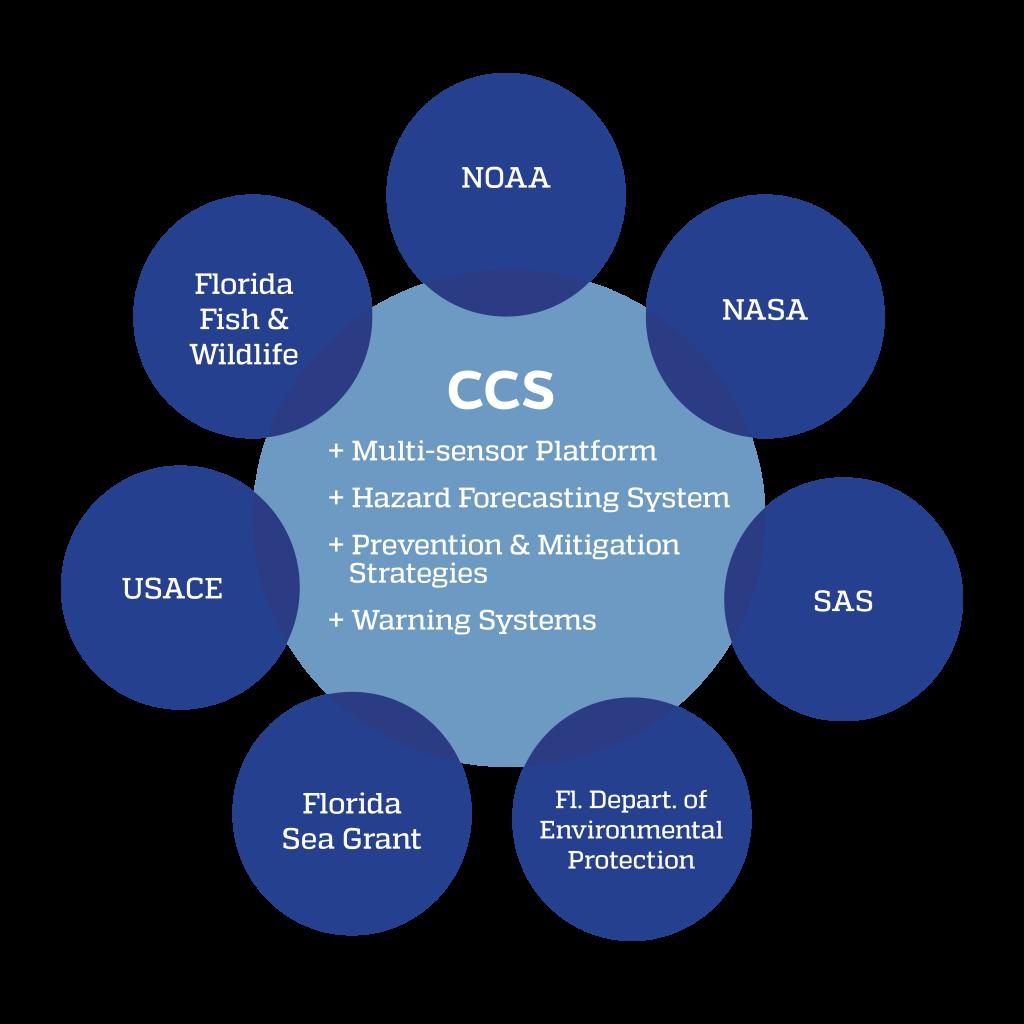 CCS Network
