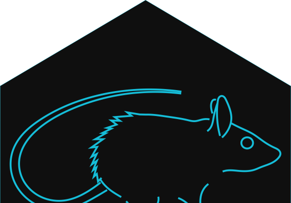 Sketch of mouse with words Acomys Research Consortium below